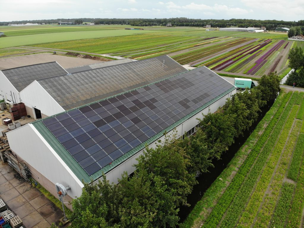 Nursery Bouwmeester is switching to renewable energy.
